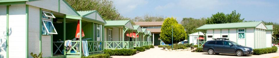 casitas de madera en oliva