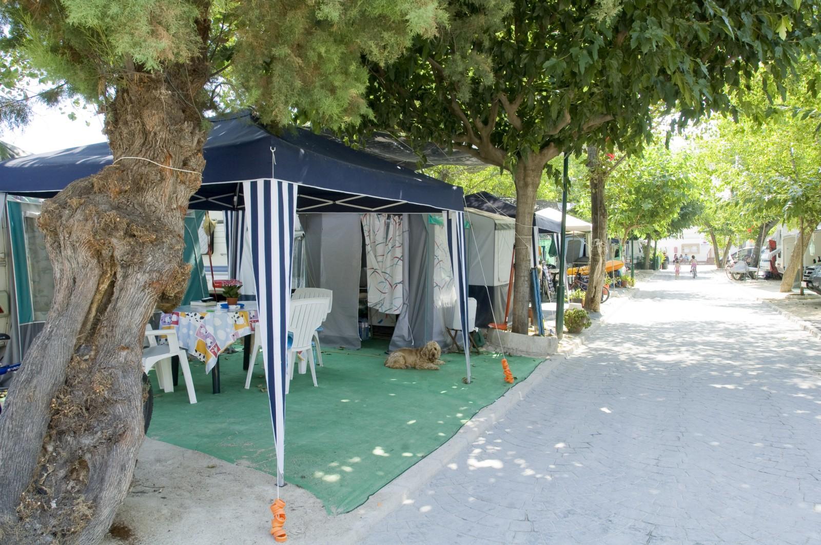 eurocamping oliva 29